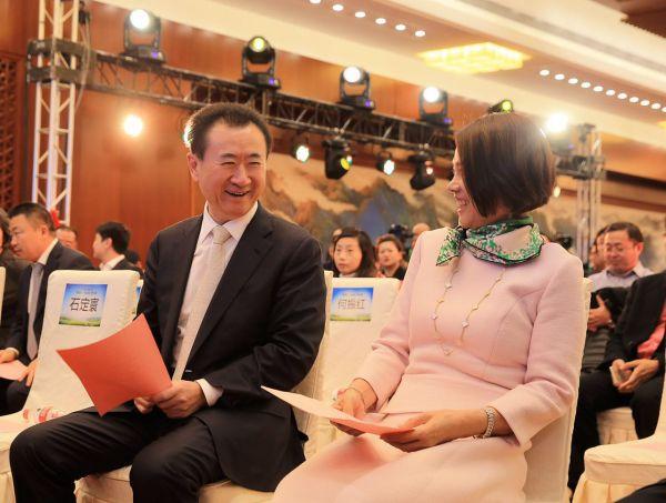 王健林:投资银隆5亿元不算多 企业家要比商人有