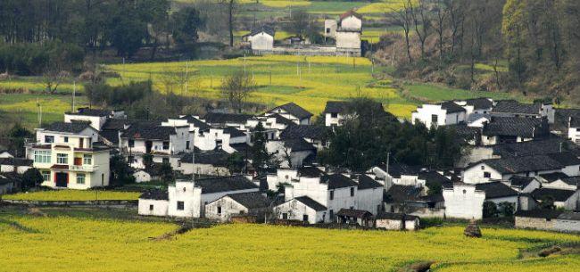 经济观察报 记者 张恒 连续三年被中央一号文件列为农村新兴支柱产业的休闲农业和乡村旅游,正在面临一次全国摸底。