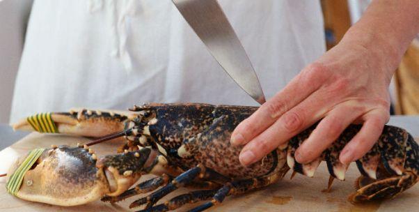 探店盒马鲜生:杀龙虾有三种方法,却没有一种能拯救顾客的时间