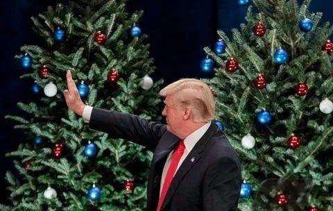 """美国税改:特朗普的""""圣诞礼物""""?"""