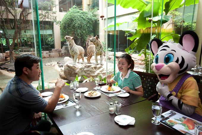 始建于2000年的长隆酒店在2009-2016年间,首家也是唯一一家连续8年获得TTG China中