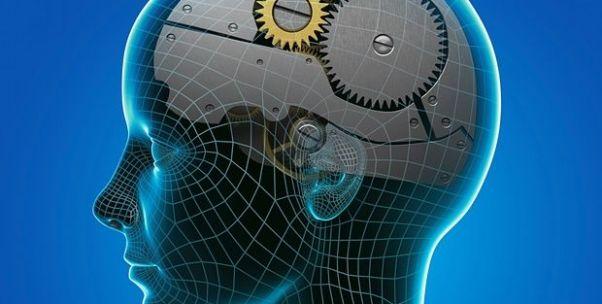人类在变得更聪明吗