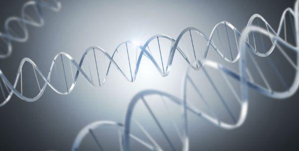 """【两会时间】科技部部长谈""""基因编辑?#20445;?#31185;技是把双刃剑,要趋利避害"""