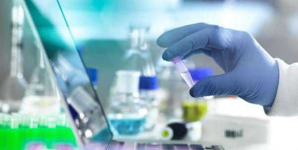 海外營收近半 南微醫學專利隱憂