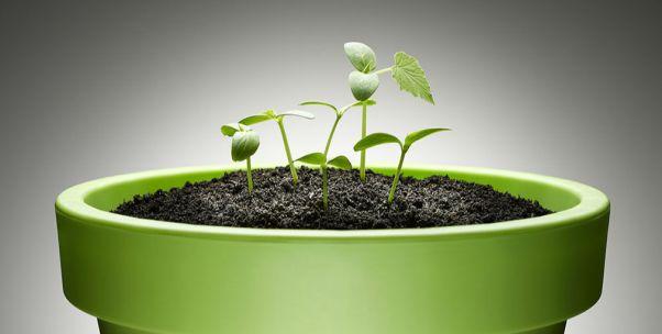 朱宏任:企業無論在什么時候,都要堅持綠色發展不動搖