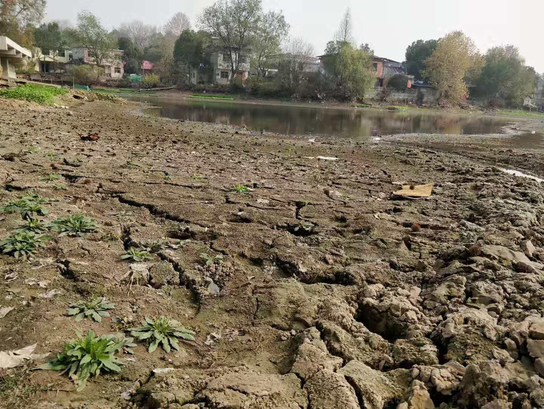 安庆怀宁高河镇 干涸的当家塘 摄影 吴小飞