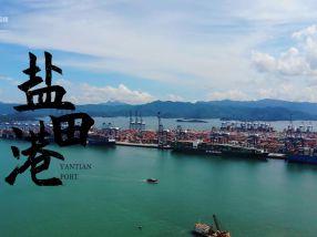 【深圳记忆】激荡四十年·蓝色机遇盐田港:全球最繁忙的集装箱码头之一